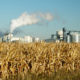 New UN Report Slams Ethanol And Other Biofuels