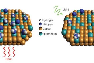 renewable hydrogen ammonia