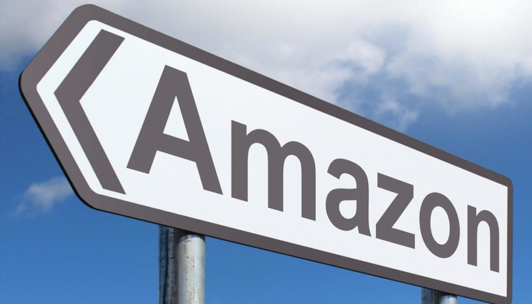 5 Affordable Amazon Gifts For the EV Owner in Your Life!