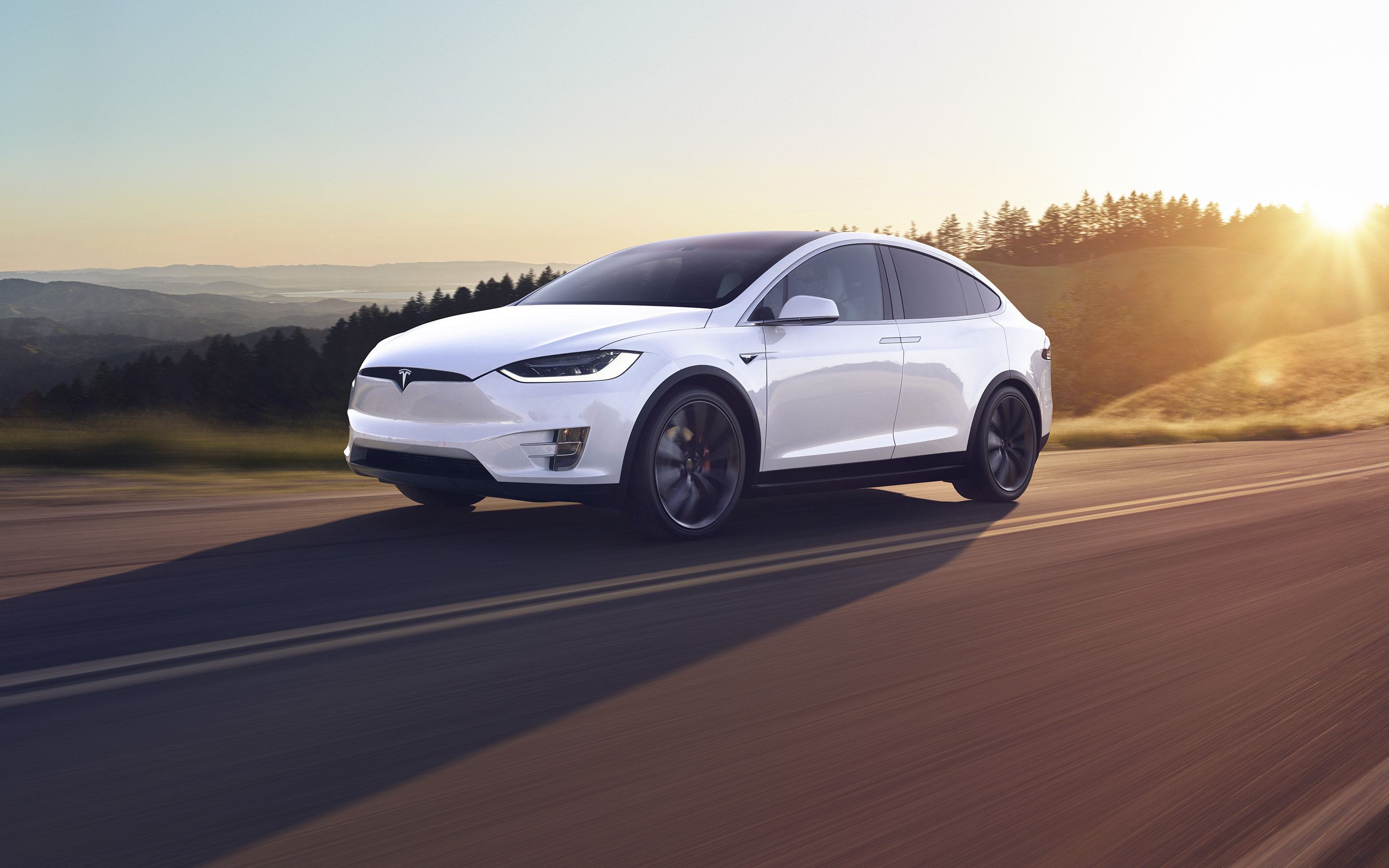 How to Open a Tesla Door - Ultimate Guide For All Models